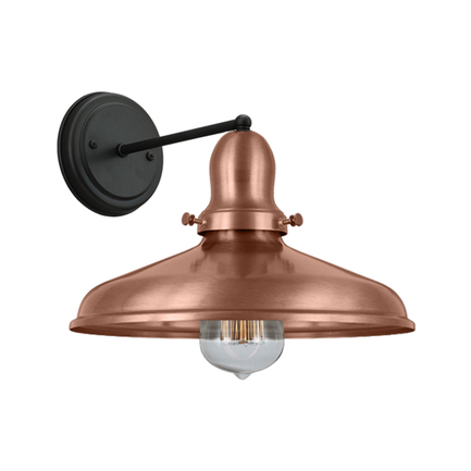"10"" shade and cap in 44 polished copper with M-1 arm and canopy in 91 black"