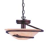 Short Chain-Hung Ceiling Light